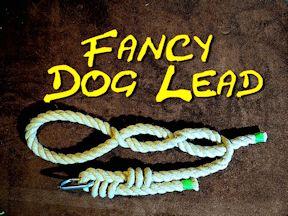 Decorative Rope Dog Lead