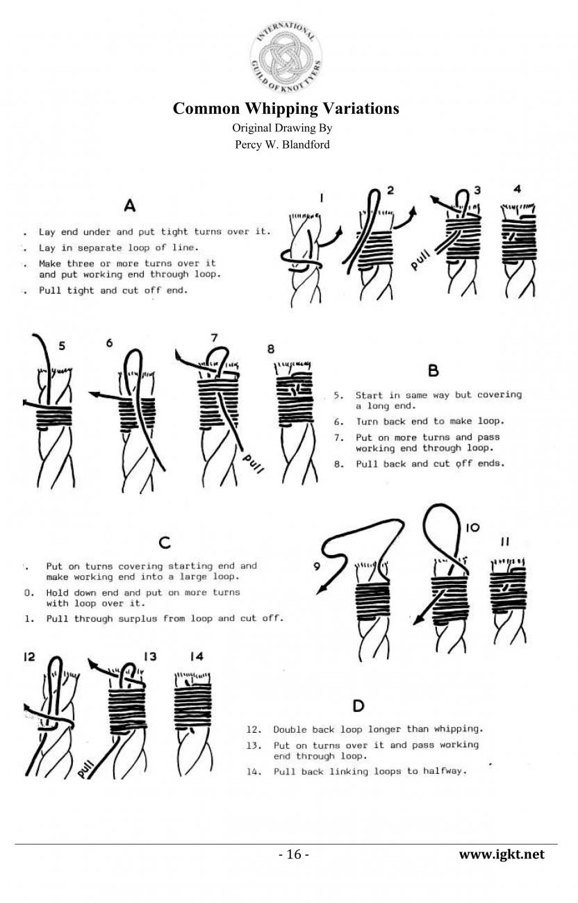 Common Whipping Variations.jpg