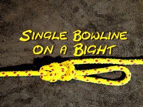 Single Bowline on a Bight